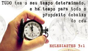 Tudo tem seu tempo